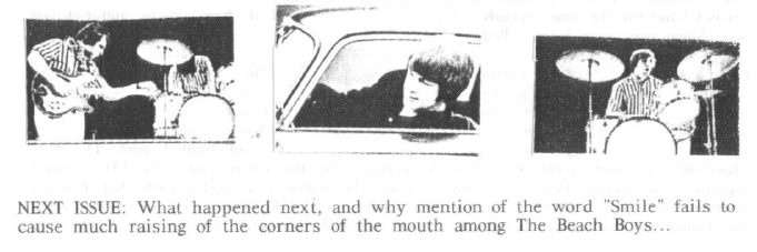 Excerpt from the feature on Pet Sounds by The Beach Boys in Paintbox fanzine (by Tim Worthington).